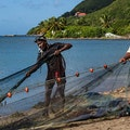 Original dominica fishing castleman.jpg?1486772646?ixlib=rails 0.3