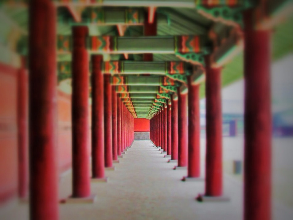 Lost among the columns Seoul  South Korea