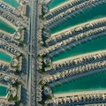 Riva Beach Club Dubai Dubai  United Arab Emirates