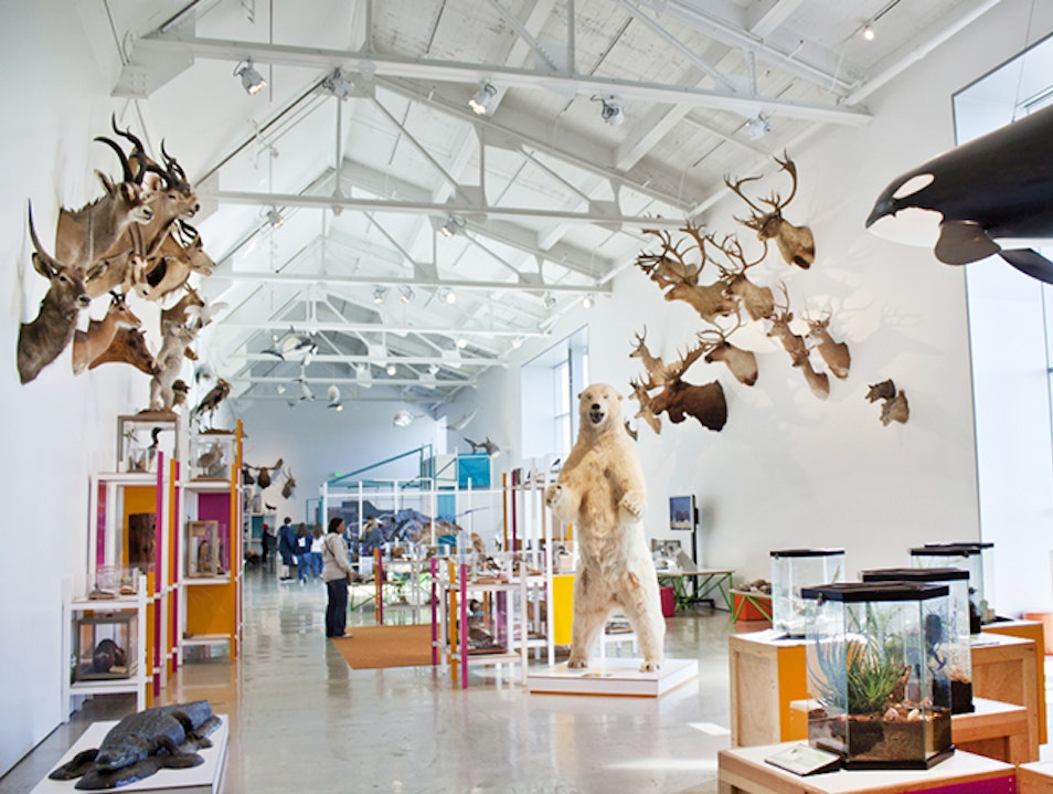 Join the Cultural Gathering at the Natural History Museum