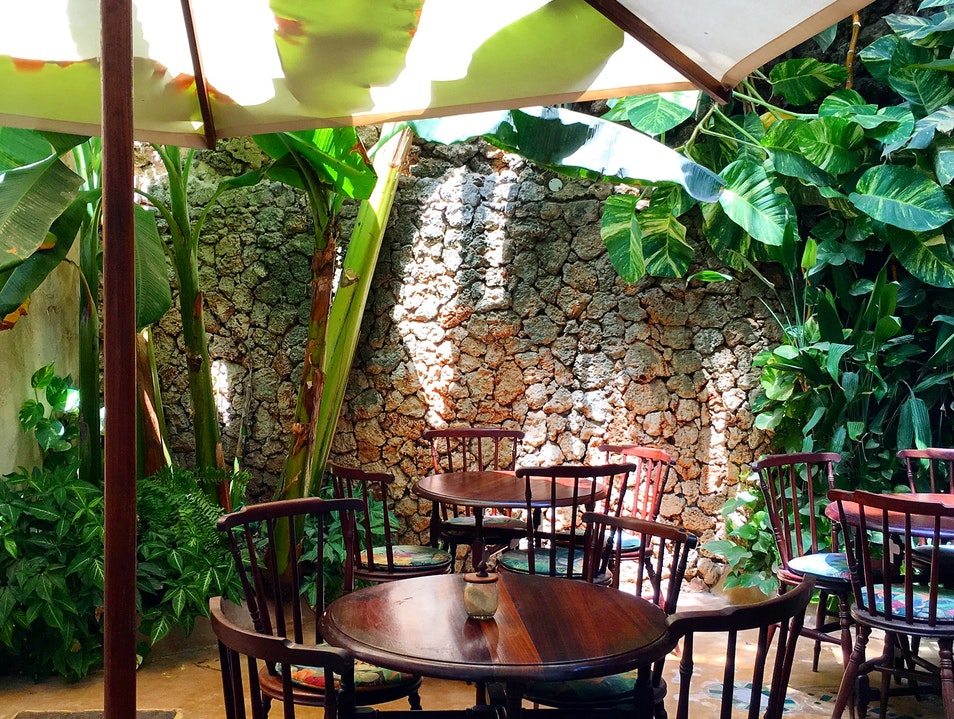 A garden cafe to escape the midday heat. Lamu  Kenya