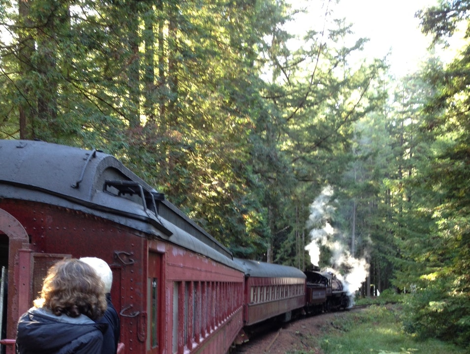 All Aboard and into the Woods! Fort Bragg California United States