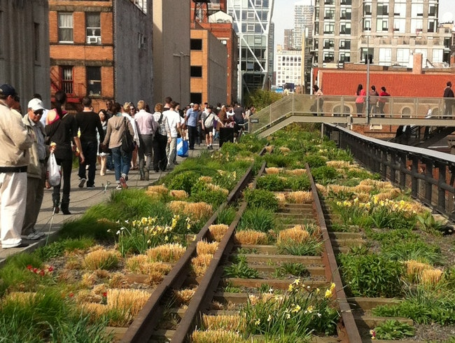 High Life on the High Line