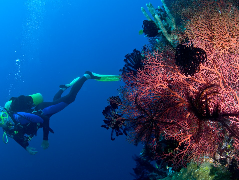 Diving in PNG