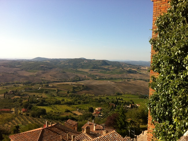 Summer view over Val D'Orcia - Room with a view