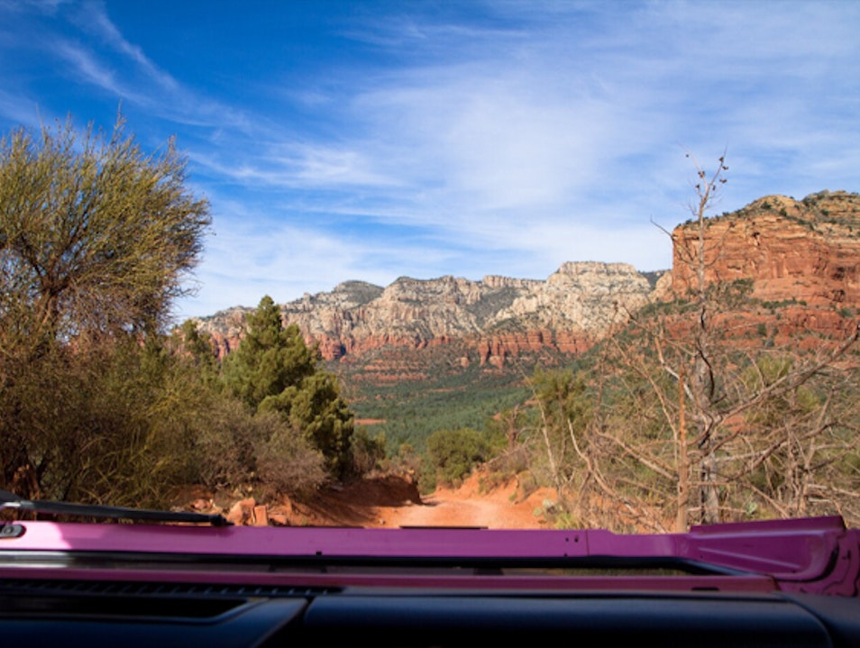 Pink Jeeps and Great Views