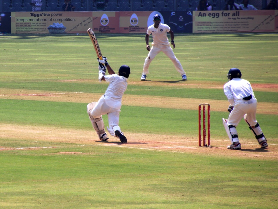 Watch a Game of Cricket