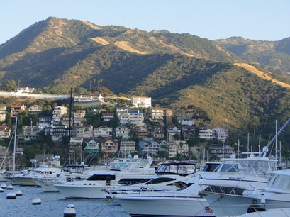 Catalina Island  Avalon California United States