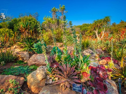 Walter Sisulu National Botanical Garden Krugersdorp  South Africa