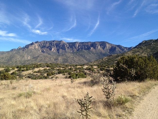 Wilderness, Just Minutes from Downtown Albuquerque
