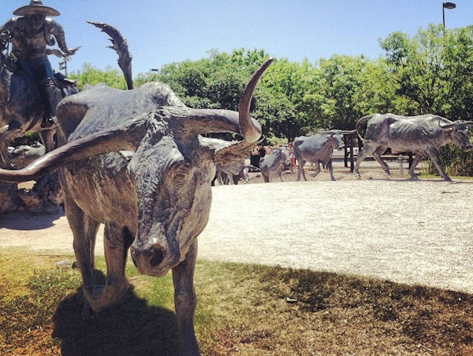 The Metal cattle drive in the heart of Dallas