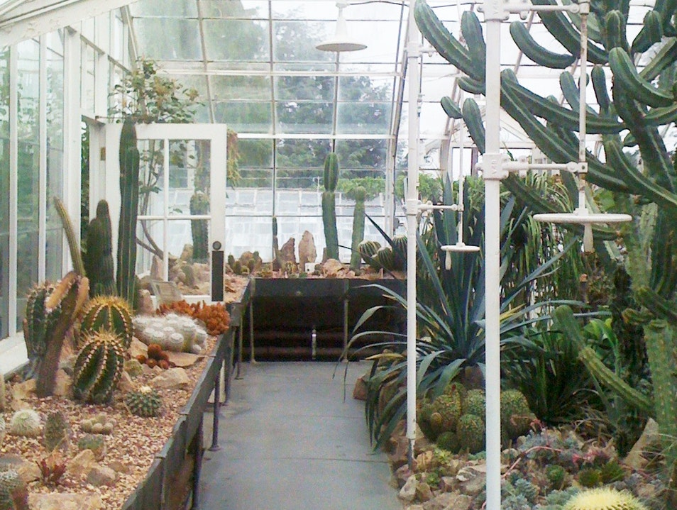 Gardeners in the Conservatory