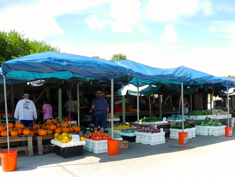 The Best & Most Beautiful Fruit Stand Jensen Beach Florida United States