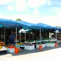 Barbours Produce Jensen Beach Florida United States