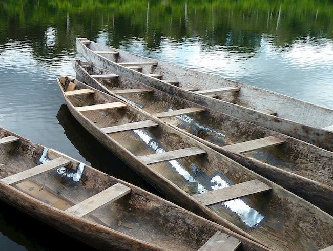Log Canoes