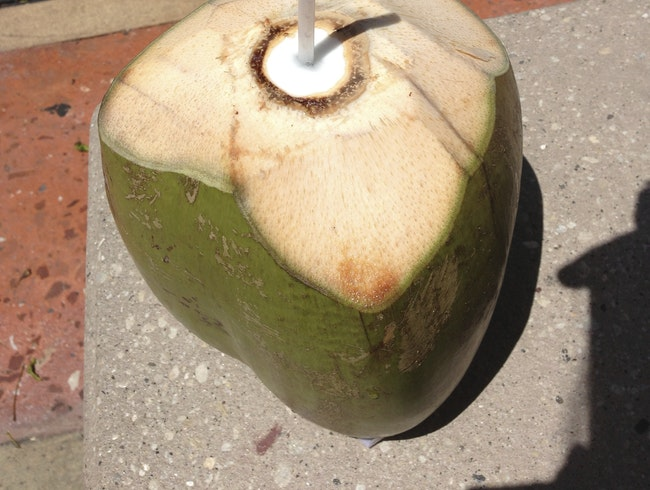 Sipping Coconut Water from the Shell