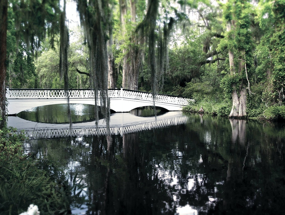 Magnolia Plantation & Gardens Charleston South Carolina United States