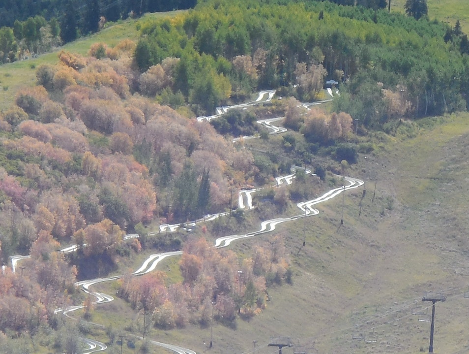 Ride the Alpine Slide at Park City Mountain Resort