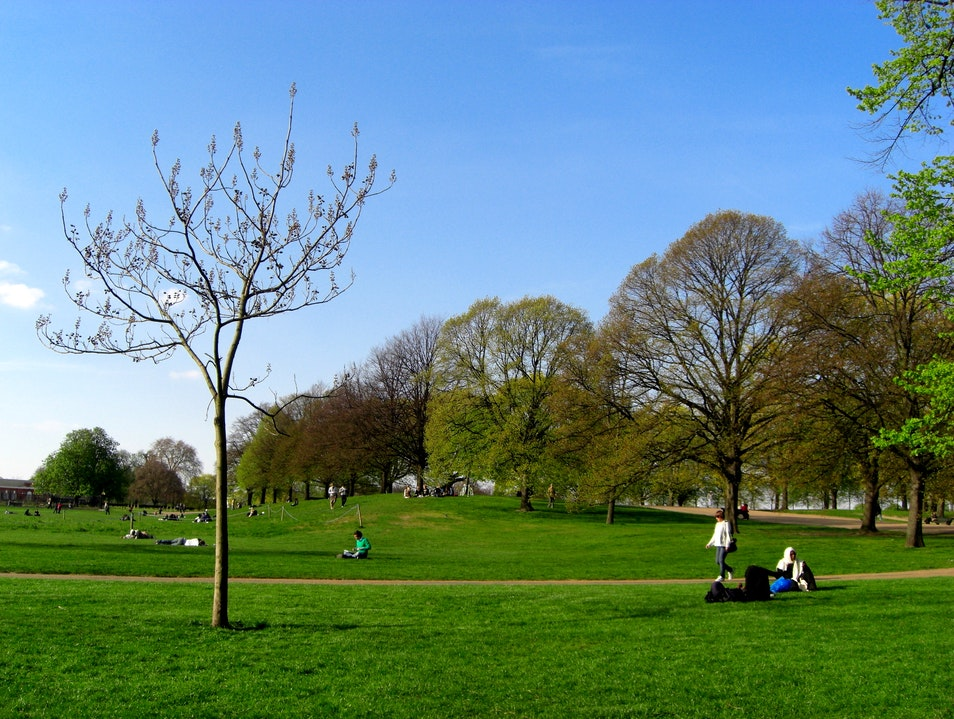 A Day in Hyde Park