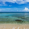 Cane Bay Beach, St. Croix Frederiksted  United States Virgin Islands
