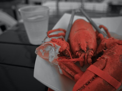Thurston's Lobster Pound Tremont Maine United States