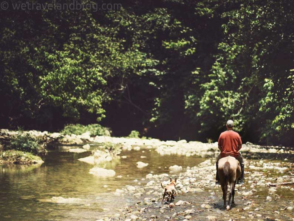 Not So Run Of The Mill Horseback Riding Sabaneta de Yasica  Dominican Republic