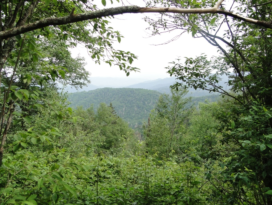 Appalachian Trail Teaser Gatlinburg Tennessee United States