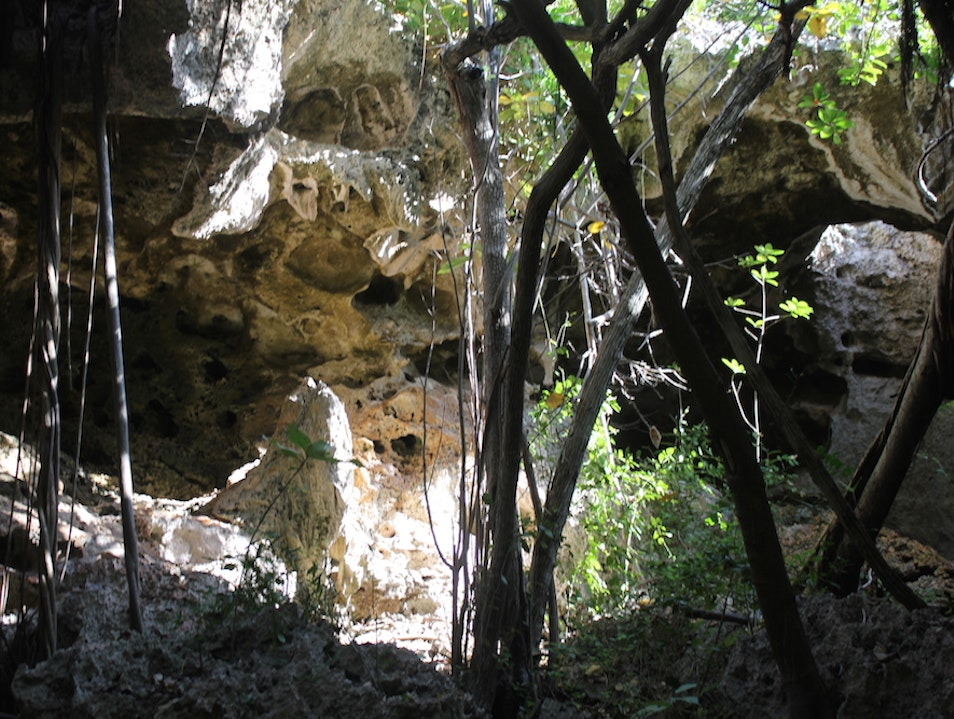 Exploring the Caves and Mangroves of Cayman Brac