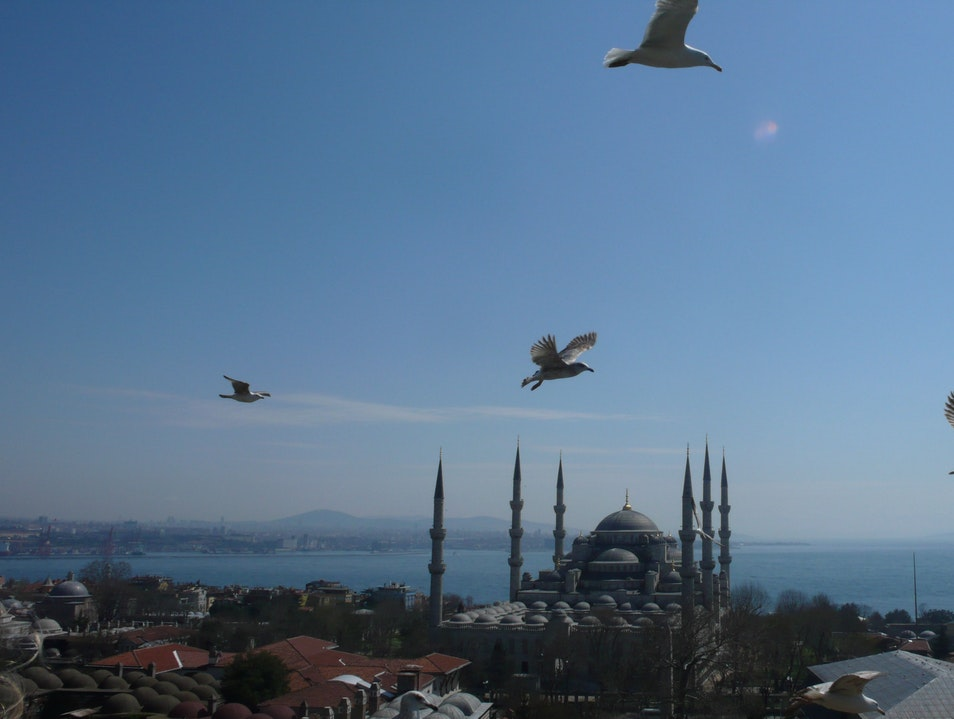 I am the Emperor of Istanbul Istanbul  Turkey