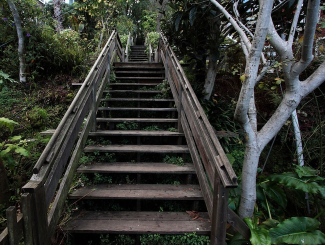 Climb up San Francisco's Filbert Steps