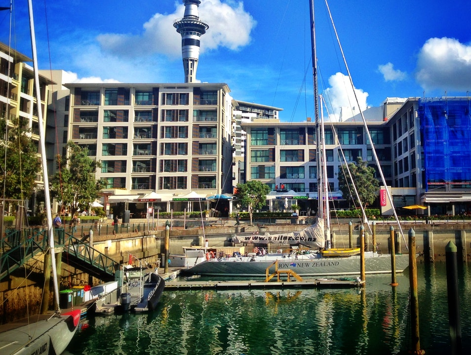 Explore Waitemata Harbour and the Auckland Waterfront Auckland  New Zealand