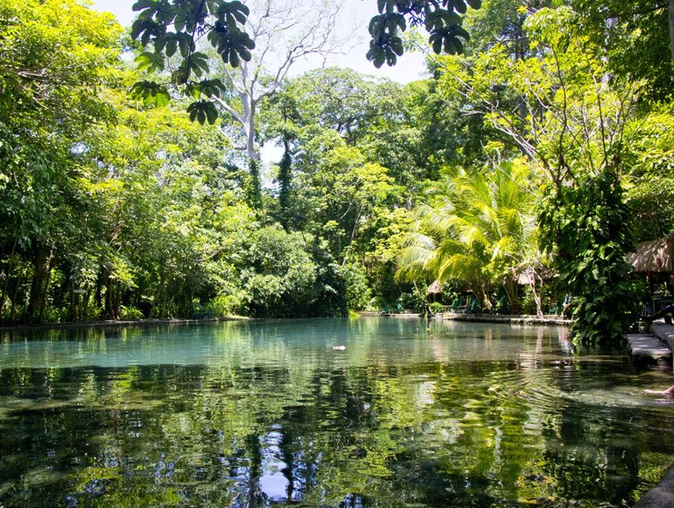 Cool Water Springs in the Tropical Heat
