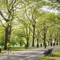 Hyde Park London  United Kingdom