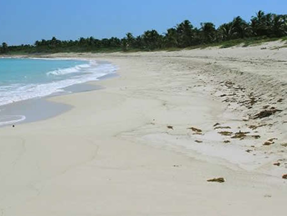 Turtle Nesting Ground with Crystal Clear Water   Mexico