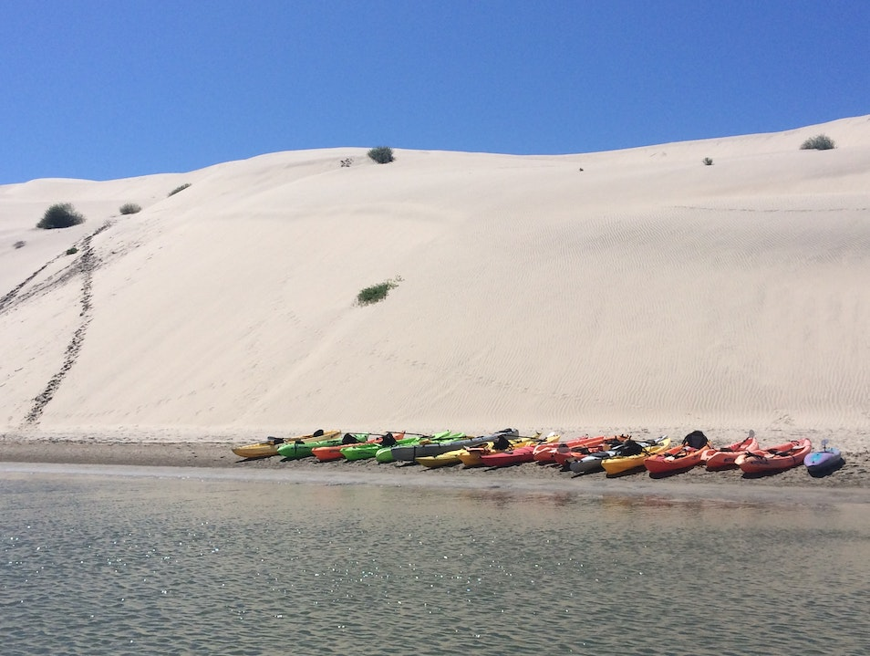 Experience Baja Sur with RED Sustainable Travel