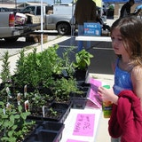 Frisco Farmers Market, A Frisco Noon Lions Club Project