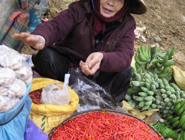 Bac Ha Market in Lao Cai