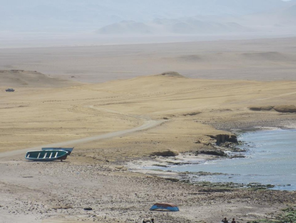 Ethereal beauty on the Paracas Peninsula Pisco  Peru