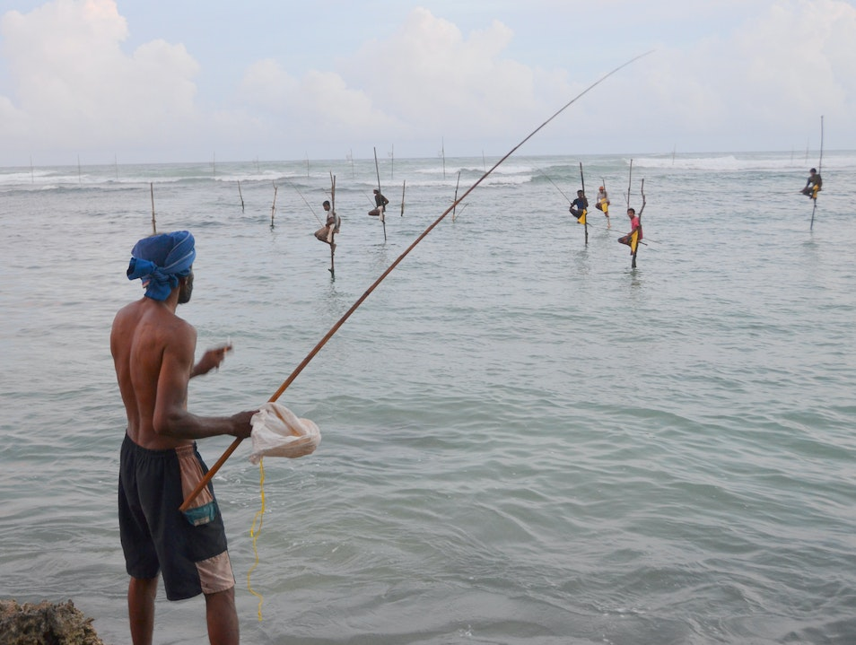 The Stilt Fishermen Matara  Sri Lanka