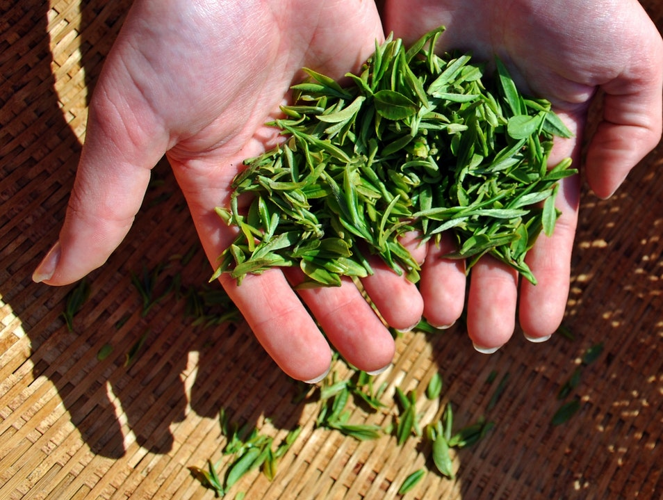 Hand Picked Green Tea Hadong Gun  South Korea