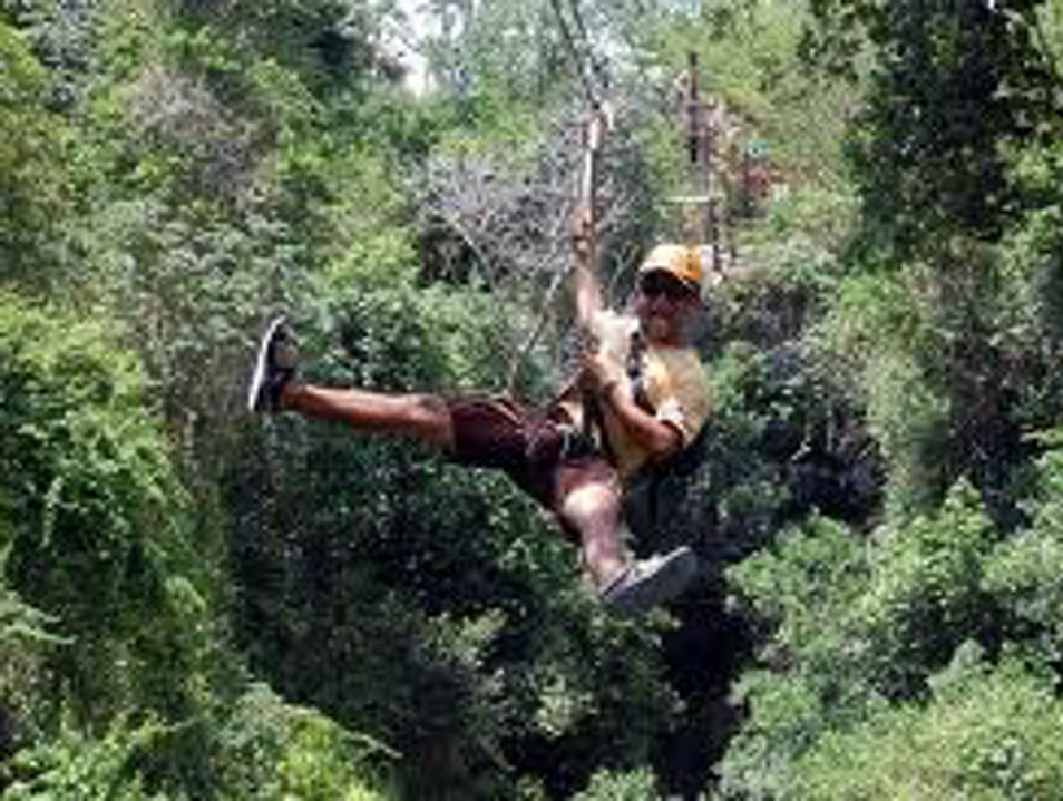 Exotic Jungle, Cenote and Maya Tours Playa Del Carmen  Mexico