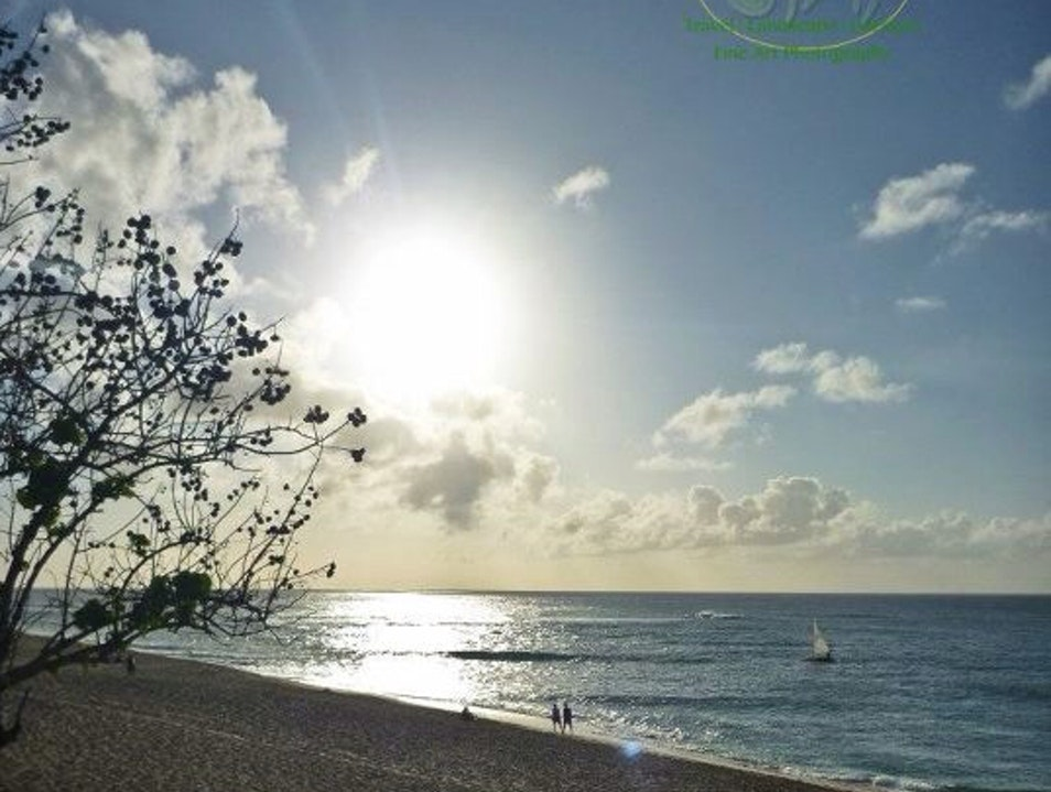 Sunset Beach Haleiwa Hawaii United States