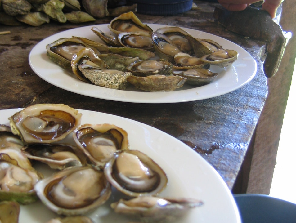 Chilote Black-Lipped Oysters: For Gourmands Chonchi  Chile