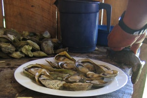Foods of the Chiloé Archipelago
