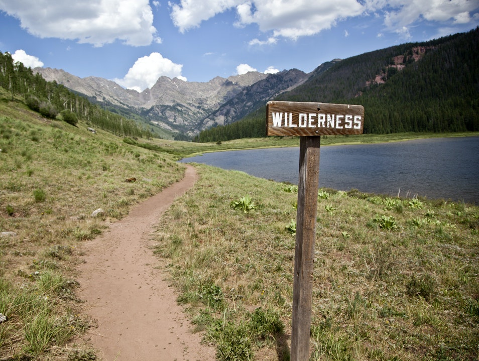 Exploring the Colorado Wilderness Vail Colorado United States