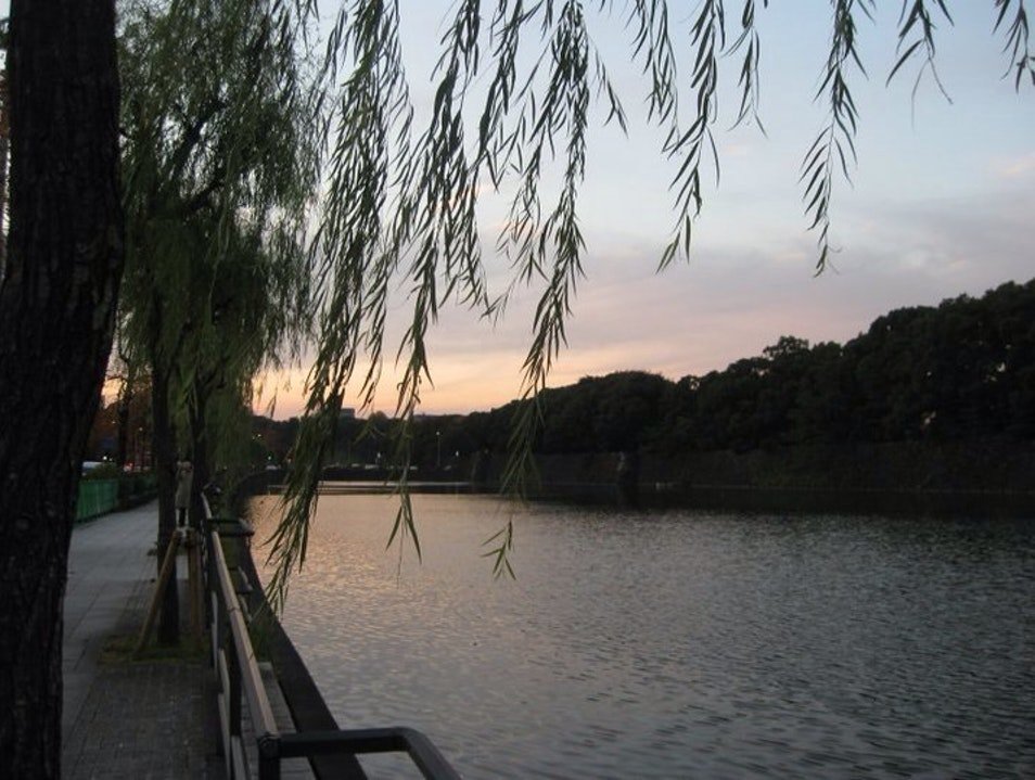 Sunset Stroll Around the Moat Tokyo  Japan