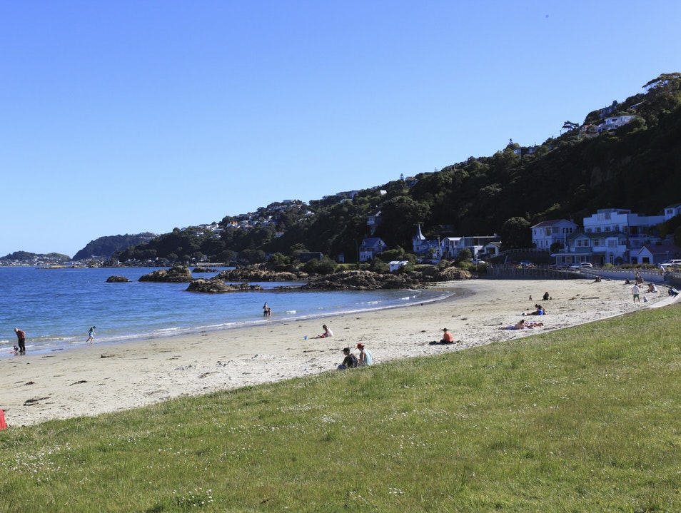 Scorching Bay to Evans Bay Wellington  New Zealand