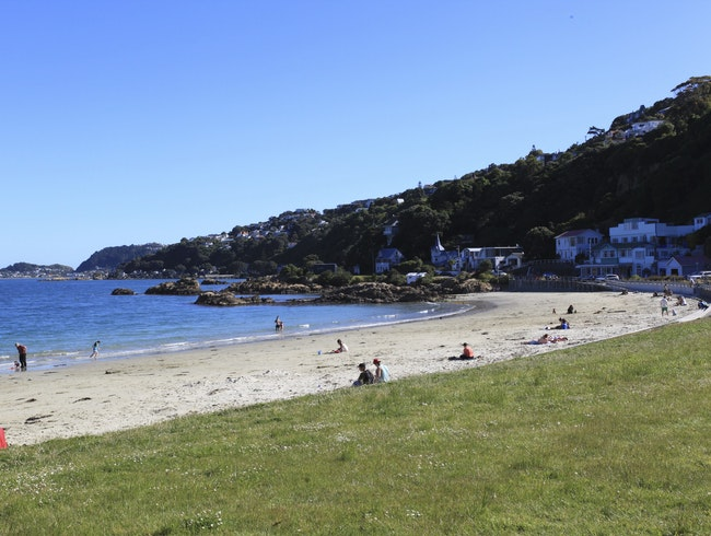 Scorching Bay to Evans Bay