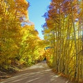 Boreas Pass Rd Breckenridge Colorado United States