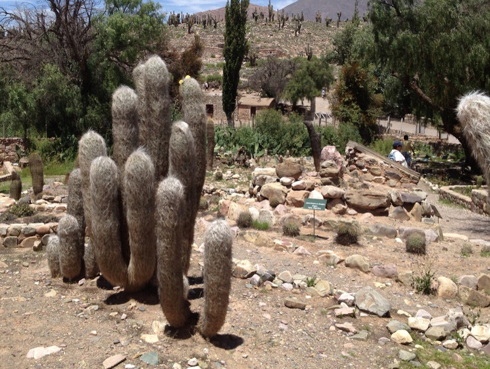 Life In A Incan Fortified Village
